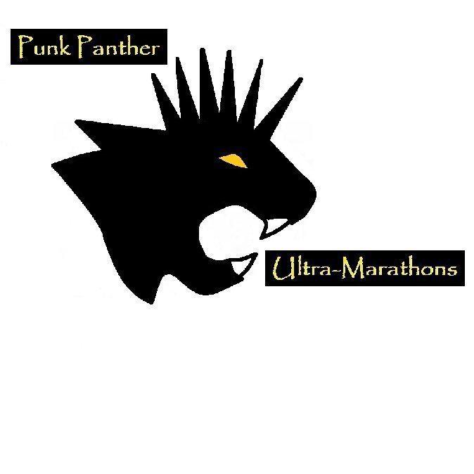 Punk Panther's logo